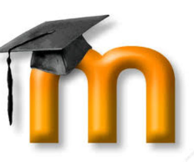 Mad At Moodle? 5 Tips for Moodle Novices